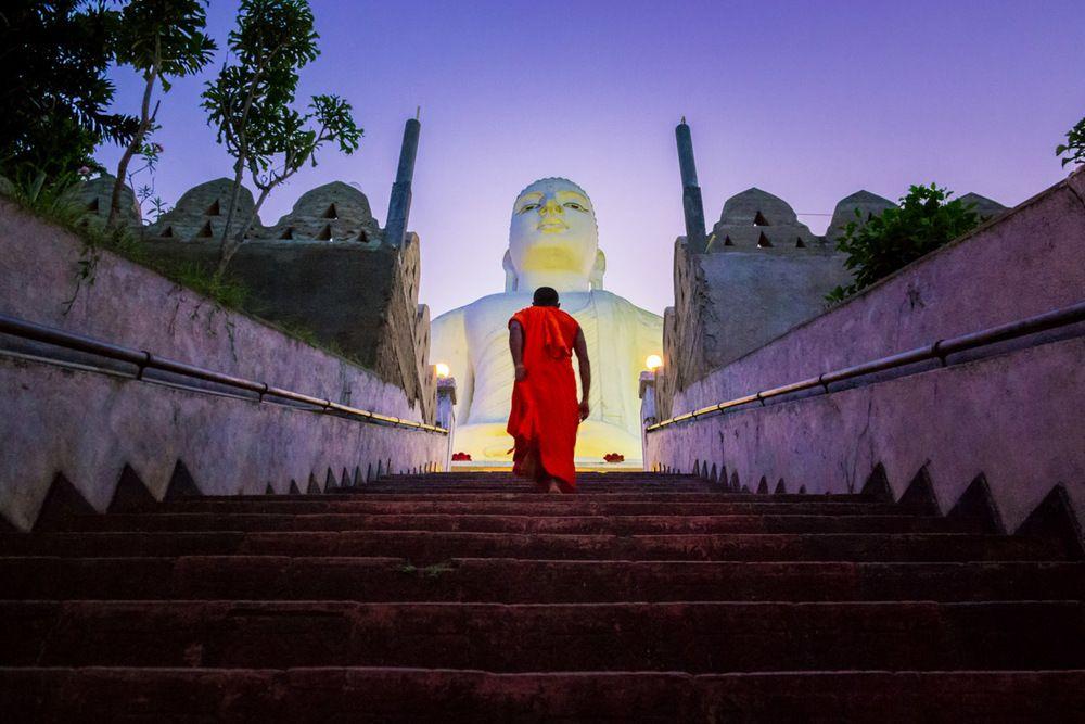 Budas de Asia