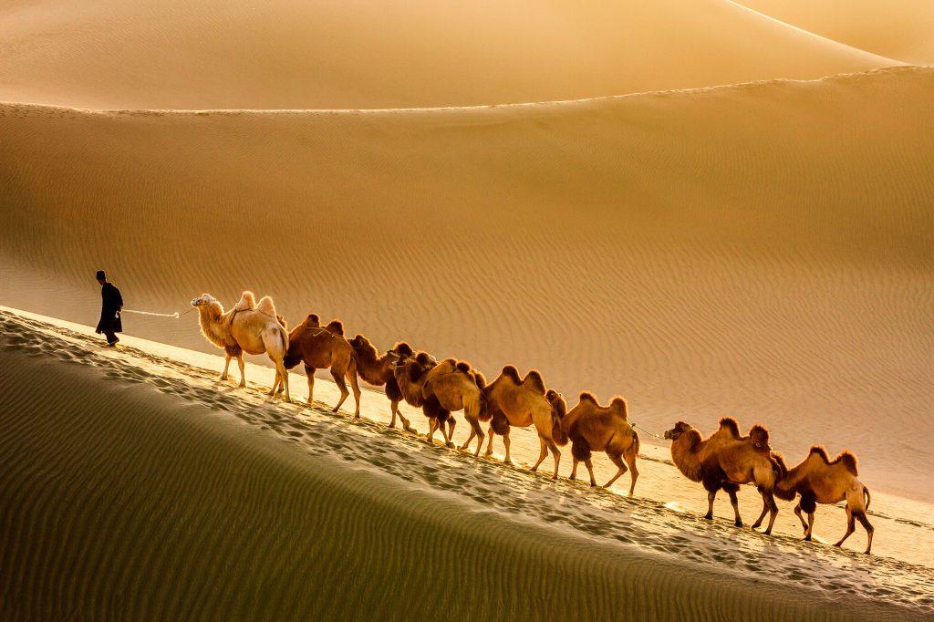 Ruta de la Seda en India